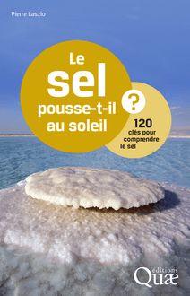Le sel pousse-t-il au soleil ? de Pierre Laszlo - fiche descriptive