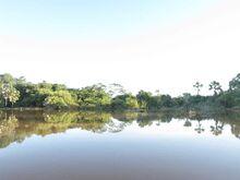 Rivière Mahavavy