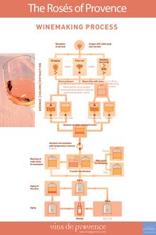 WINEMAKING PROCESS - The Rosés of Provence - Vins de Provence