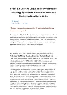 Frost & Sullivan: Large-scale Investments in Mining Spur Froth Flotation Chemicals Market in Brazil and Chile