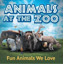 Animals at the Zoo: Fun Animals We Love