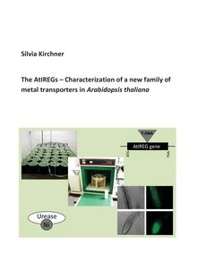 The AtIREGs [Elektronische Ressource] : characterization of a new family of metal transporters in Arabidopsis thaliana / presented by Silvia Kirchner