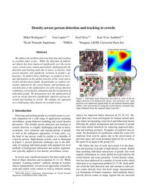Density aware person detection and tracking in crowds