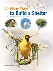 So Many Ways to Build a Shelter