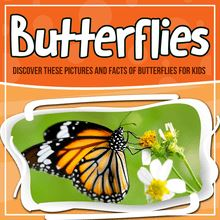 Butterflies: Discover These Pictures And Facts Of Butterflies For Kids