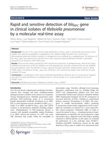 Rapid and sensitive detection of bla KPC gene in clinical isolates of Klebsiella pneumoniae by a molecular real-time assay