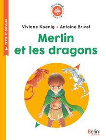 Merlin et les dragons de Antoine Brivet, Viviane Koenig - fiche descriptive