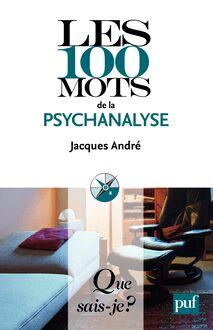 Lire Les 100 mots de la psychanalyse de Jacques André