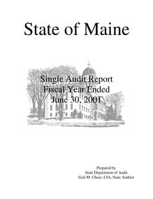Single Audit Report Fiscal Year Ended June 30, 1996