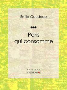 Paris qui consomme de Ligaran, Émile Goudeau - fiche descriptive