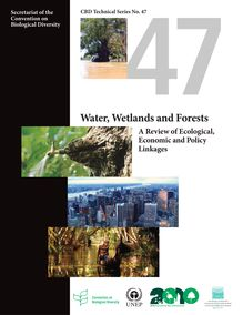 Water, wetlands and forests - A review of Ecological Economic and Policy Linkages