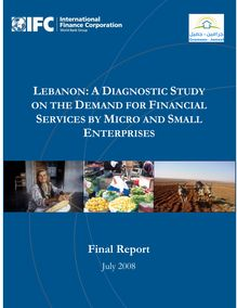 Lebanon: a diagnostic study on the demand for financial services by micro and small enterprises