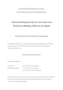 Structural requirements for activation and membrane binding of human {_m63-calpain [mu-calpain] [Elektronische Ressource] / Amaury Ernesto Fernández-Montalván