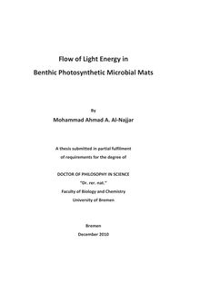 Flow of light energy in benthic photosynthetic microbial mats [Elektronische Ressource] / by Mohammad Ahmad A. al-Najjar