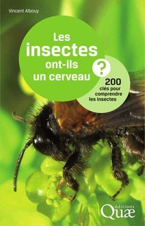 Les insectes ont-ils un cerveau ? de Vincent Albouy - fiche descriptive