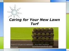 Caring for Your New Lawn Turf