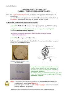 La production de matière par les végétaux chlorophylliens - cours 6e SVT