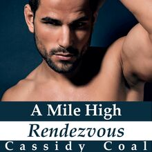 A Mile High Rendezvous (A Mile High Romance Book 4)