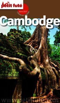 Cambodge 2016-2017 Petit Futé (avec cartes, photos + avis des lecteurs) de Dominique Auzias, Jean-Paul Labourdette - fiche descriptive