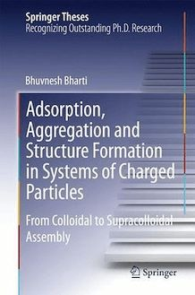 Adsorption, Aggregation and Structure Formation in Systems of Charged Particles