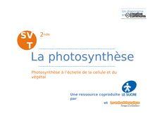 La photosynthèse (2)
