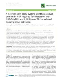 A rice transient assay system identifies a novel domain in NRR required for interaction with NH1/OsNPR1 and inhibition of NH1-mediated transcriptional activation