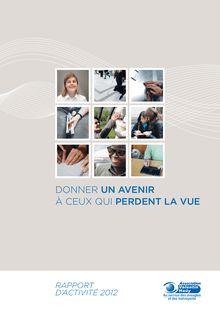 Rapport d'activité 2012 Association Valentin Haüy ...