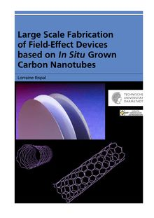 Large scale fabrication of field-effect devices based on in situ grown carbon nanotubes [Elektronische Ressource] / von Lorraine Rispal
