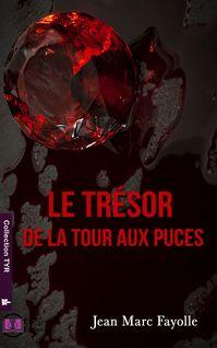 Le trésor de la Tour Aux Puces - Jean-Marc Fayolle