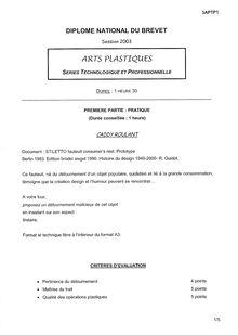 Brevet 2003 arts plastiques