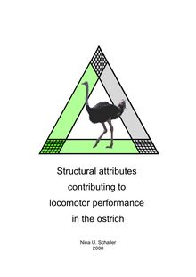Structural attributes contributing to locomotor performance in the ostrich (Struthio camelus) [Elektronische Ressource] / presented by Nina U. Schaller