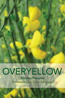 Overyellow, an Installation