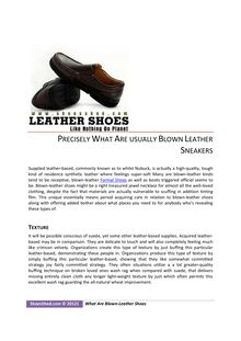 Precisely What Are usually Blown Leather Sneakers