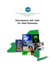 Environmental Self Audit for Small Businesses