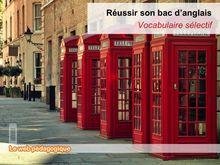 Bac 2014 Fiche vocabulaire selectif Anglais