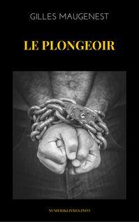 Le Plongeoir de Gilles Maugenest - fiche descriptive