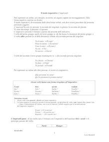 Il modo imperativo in francese : corso di grammatica ed esercizi